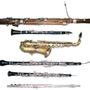 Woodwind Instructors