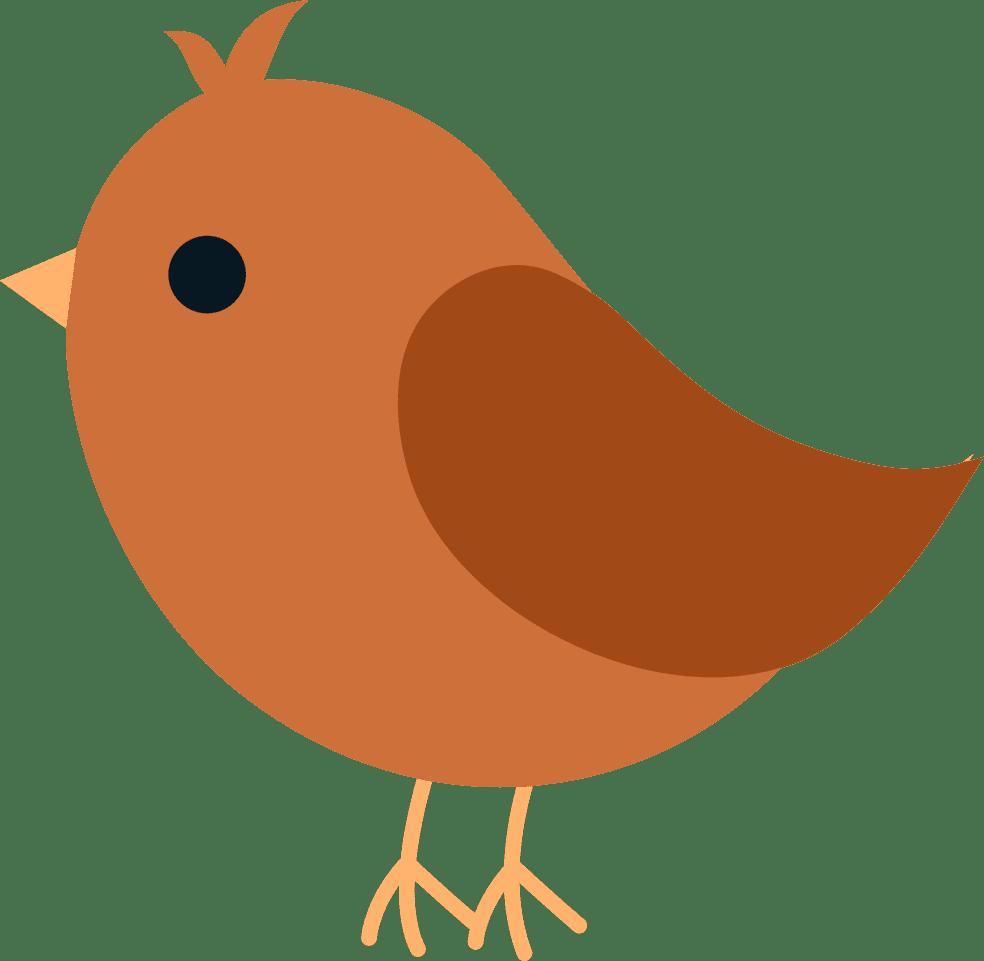 Bird orange. Villa musica